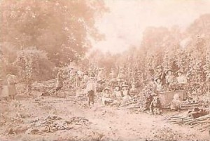 hop_picking_crookham_1905