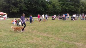 The 2017 Fete Dog Show